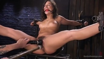 fucked right up weirdo immobilizes juicy abella risk and anguish her hairy cherry