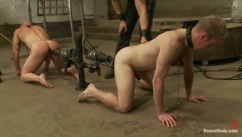 A pair of Submissive Gay Gentlemen Get Fucked by Equipment and Penis in BDSM Vid