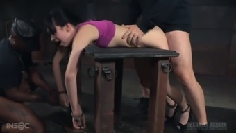 Wailing meek girl Aria Alexander must know just how BDSM operates