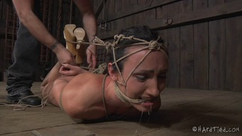 Shout as servitude missy pussy is mocked applying products in BDSM