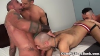 Black wolf assfucking twinks in foursome