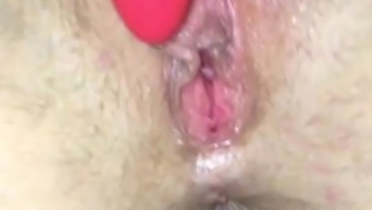 horny little one